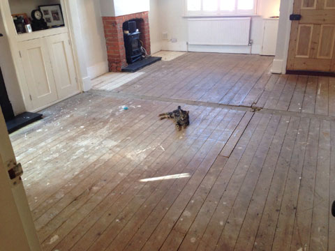 pine floor restoration essex